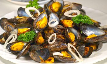 Recipe Mussels with Shallots